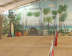 The Island's indoor courts, ready for year round volleyball!